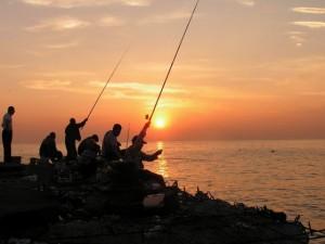 Рыбалка по мерефянскому направлению